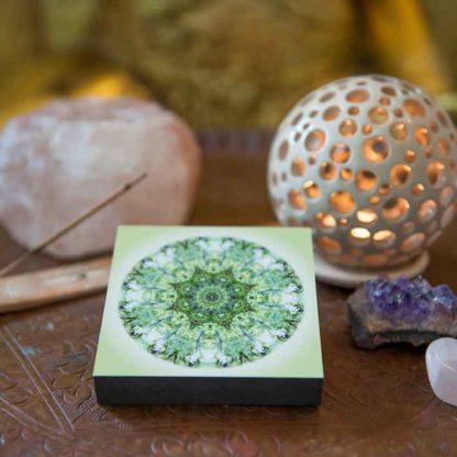 beispiel-anwendung-meditation