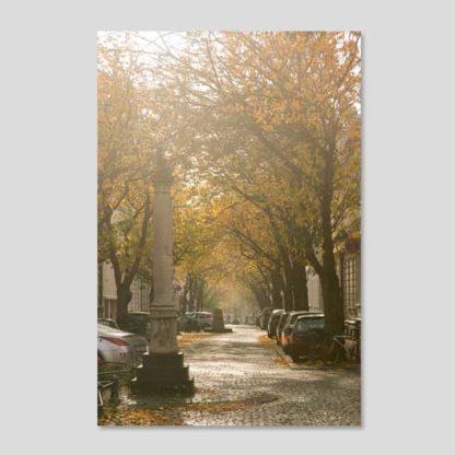 Altstadt-Herbst
